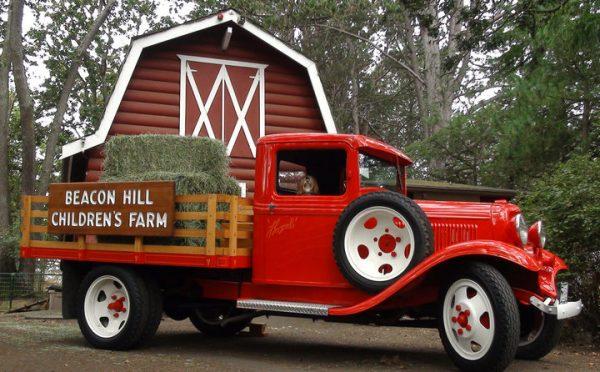 photo of hay